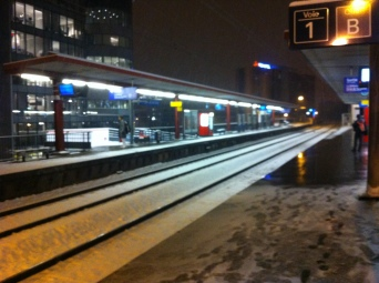 First snow of the winter, Issy-les-Moulineaux